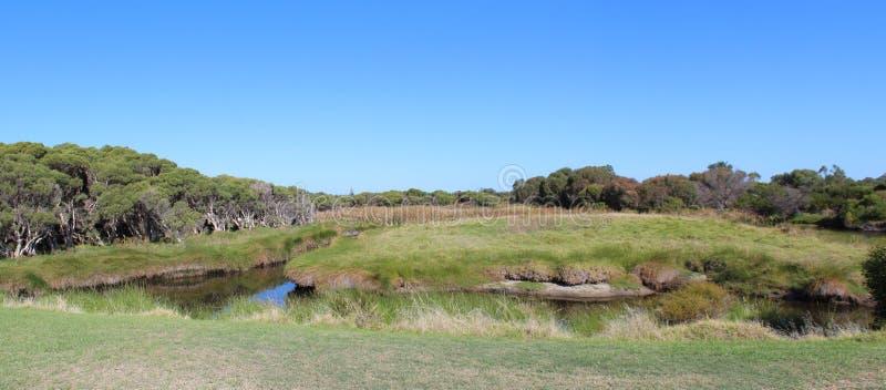 Panorama Duży bagno Bunbury Zachodni Australia zdjęcia stock