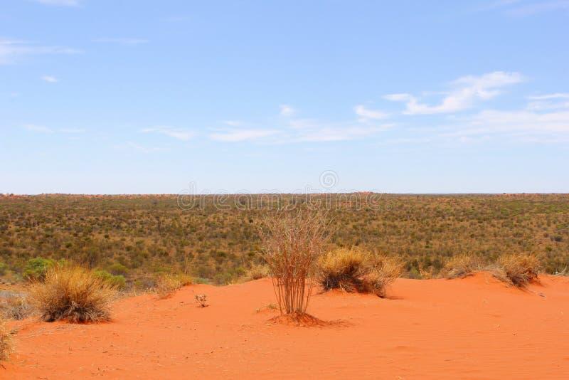 Panorama du désert au centre rouge de l'Australie images stock