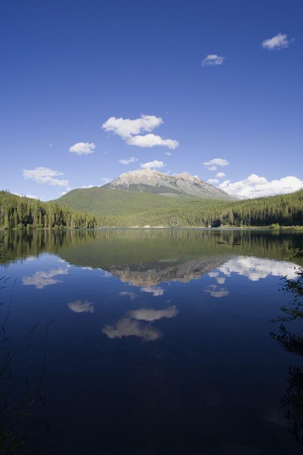 Panorama du lac avec du charme Alces photo stock