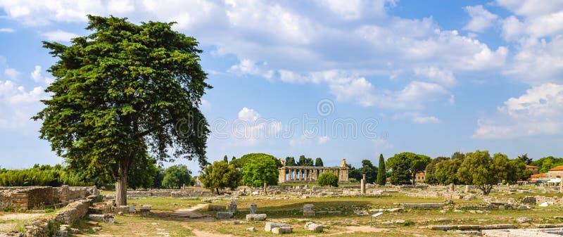 Panorama du temple d'Athéna chez Paestum photos libres de droits