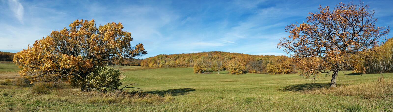 Panorama eines Herbsttages lizenzfreie stockfotografie