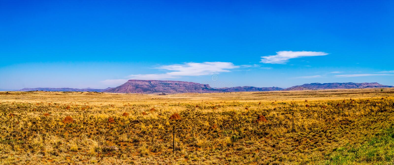 Panorama of the Endless wide open landscape of the semi desert Karoo Region in Free State and Eastern Cape. Provinces in South Africa under blue sky royalty free stock image