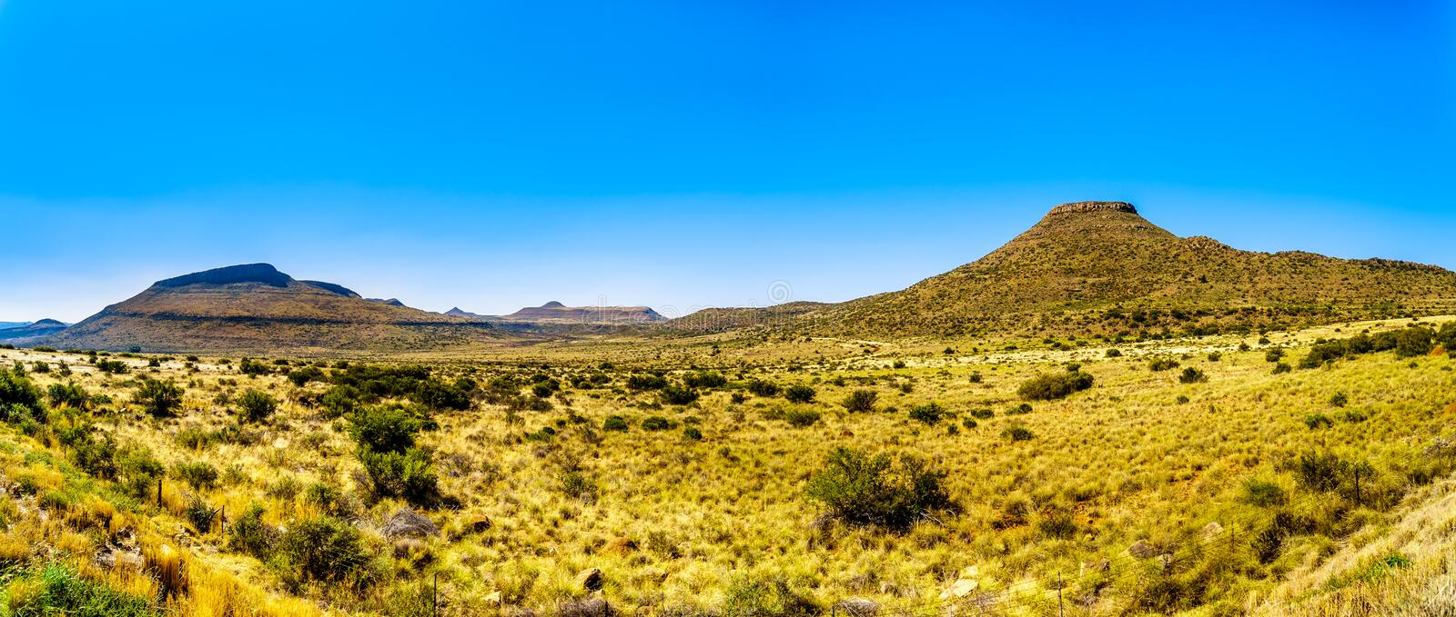 Panorama of the Endless wide open landscape of the semi desert Karoo Region in Free State and Eastern Cape. Provinces in South Africa under blue sky royalty free stock photo