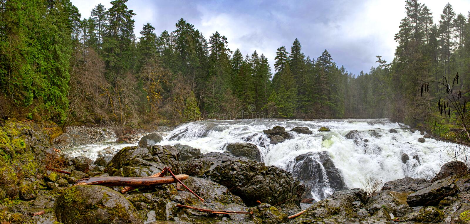 Panorama of Englishman River Falls upper waterfalls in Vancouver royalty free stock photo