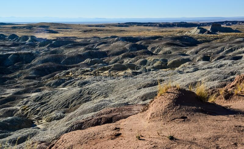Panorama erosive multi-colored clay in Petrified Forest National Park, Arizona.  royalty free stock image
