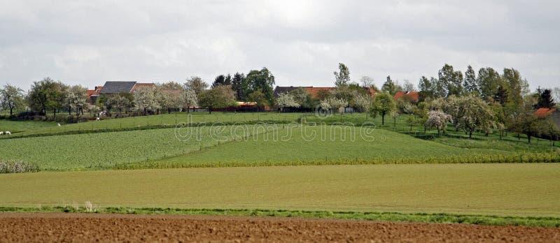 Panorama escénico de los campos fotos de archivo