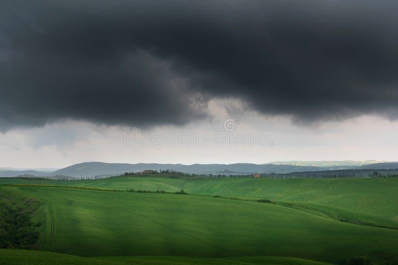 Panorama escénico del paisaje de Toscana con Rolling Hills y los campos de la cosecha en luz de oro de la mañana fotografía de archivo