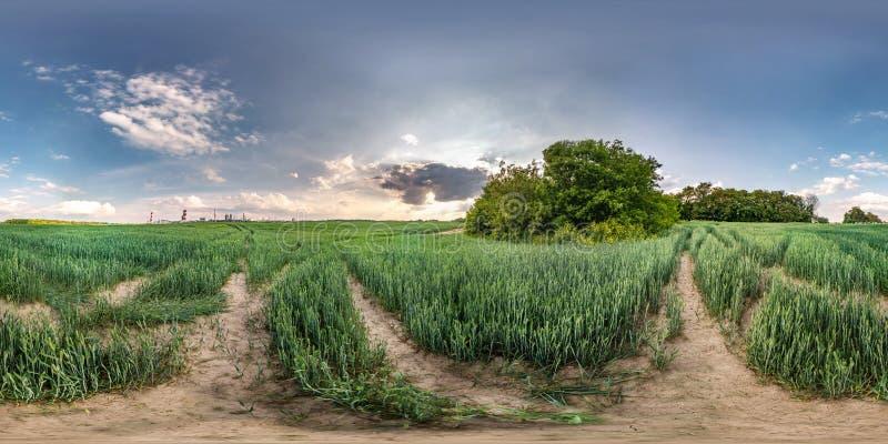 Panorama esf?rico incons?til completo del hdri 360 grados de opini?n de ?ngulo entre el campo del centeno del prado que pasa por  imagen de archivo