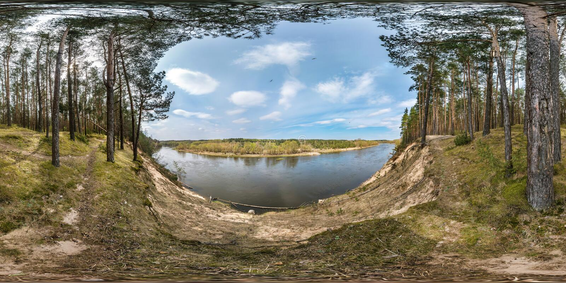 Panorama esférico sem emenda completo 360 graus de opinião de ângulo no precipício de um rio largo na floresta do pinery no d fotos de stock