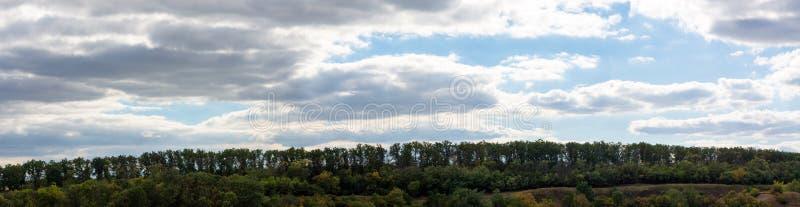 Panorama europeo de hojas caducas del bosque de octubre imagen de archivo libre de regalías
