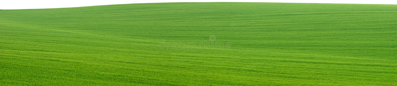 panorama för utklippfältgreen arkivbild