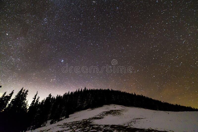 Panorama f?r landskap f?r vinterbergnatt Ljus konstellation f?r Vintergatan i m?rkt - bl? stj?rnklar himmel ?ver m?rk gran s?rjer arkivbild