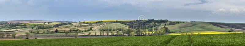 Panorama falisty łąki wiosny krajobraz obraz stock