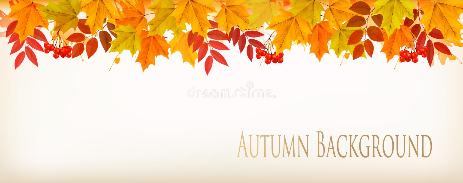Panorama Fall Autumn Colorful Leaves Background. Vector royalty free illustration