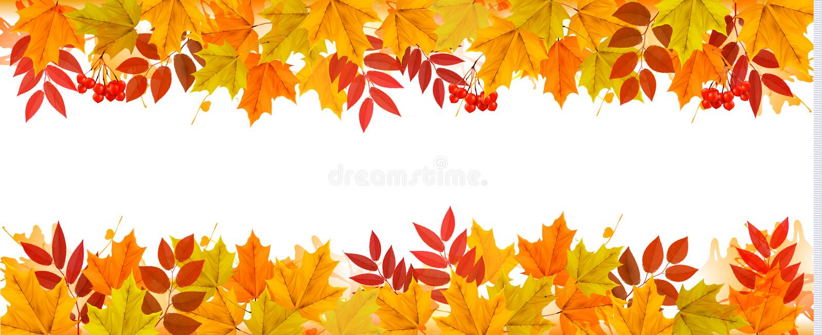 Panorama Fall Autumn Colorful Leaves Background. vector illustration