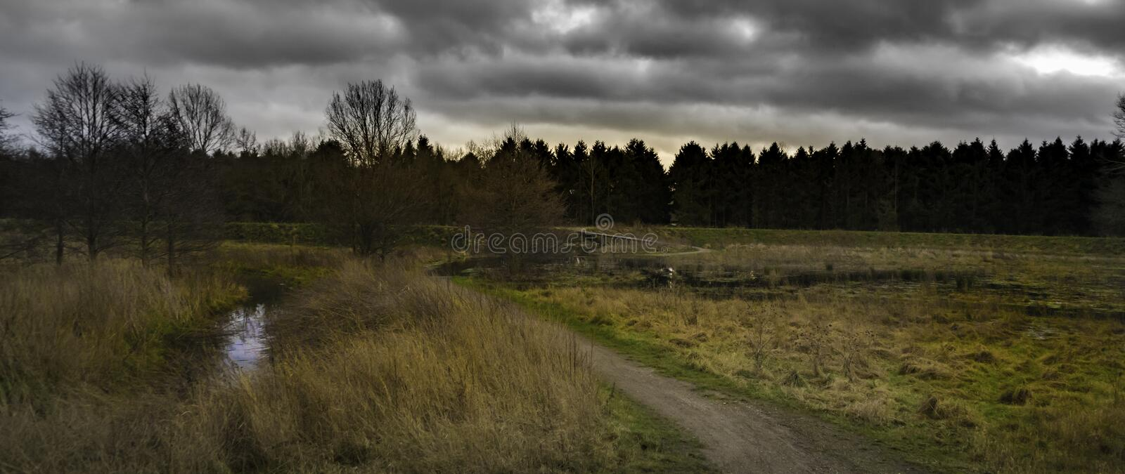 Panorama of field with stormy clouds. Panorama of country field with trees against skies with grey stormy clouds stock photo