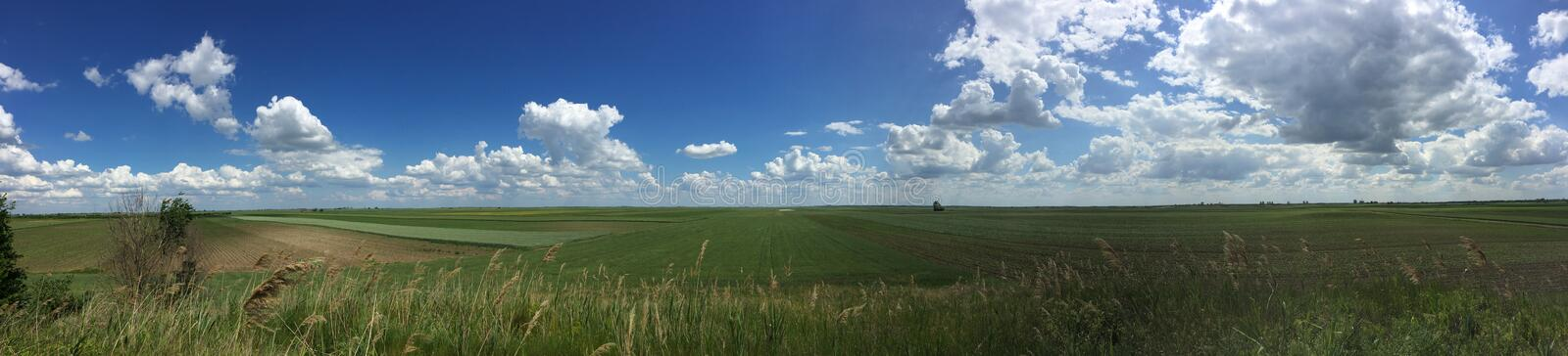 Panorama of a field stock photo