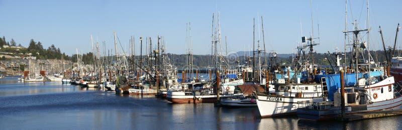 Panorama of fishing boats at anchor royalty free stock image