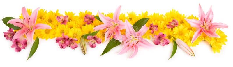 Panorama floral imagen de archivo