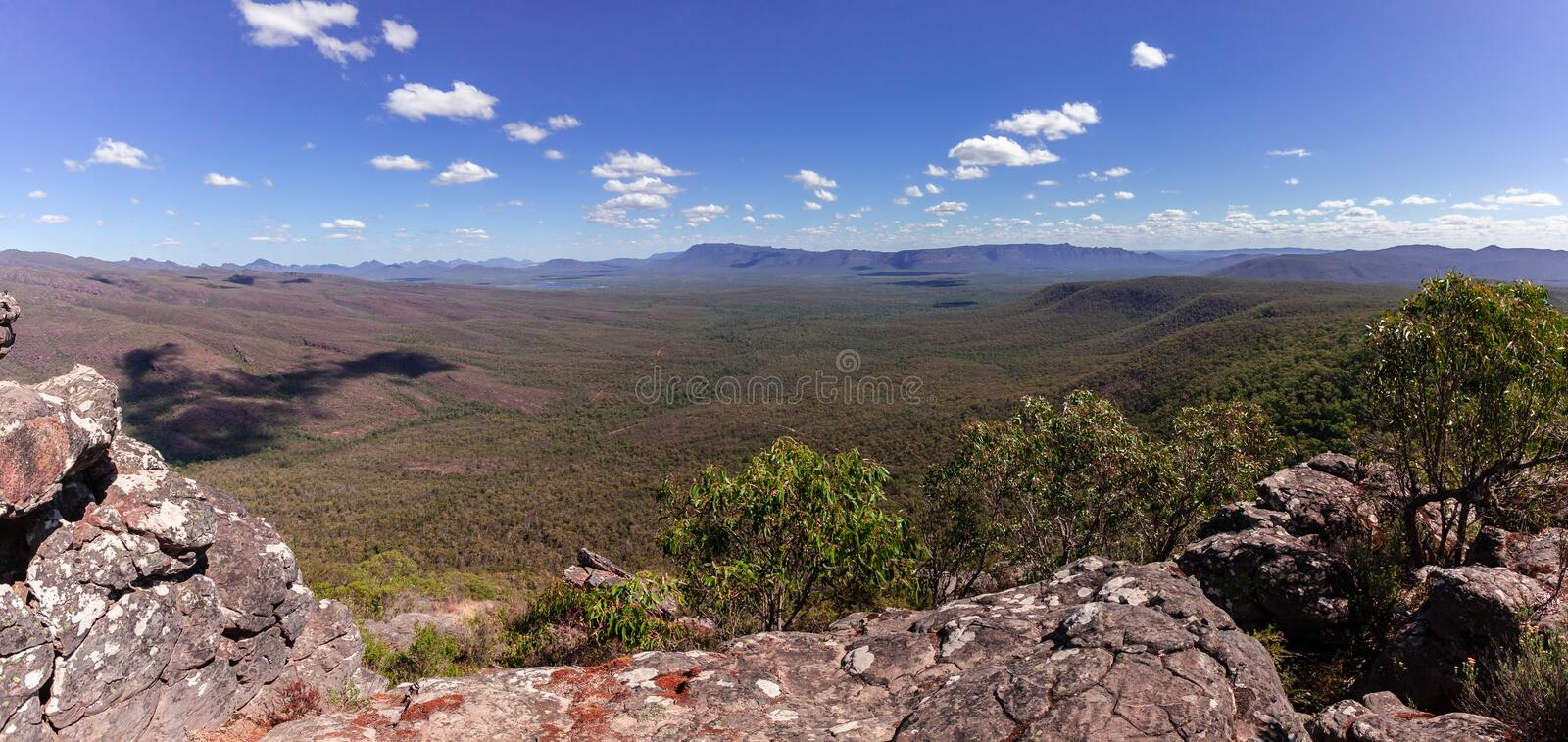 Panorama of forest and mountains. Beautiful panorama of forest and mountains in Grampians National Park, Victoria, Australia royalty free stock photo