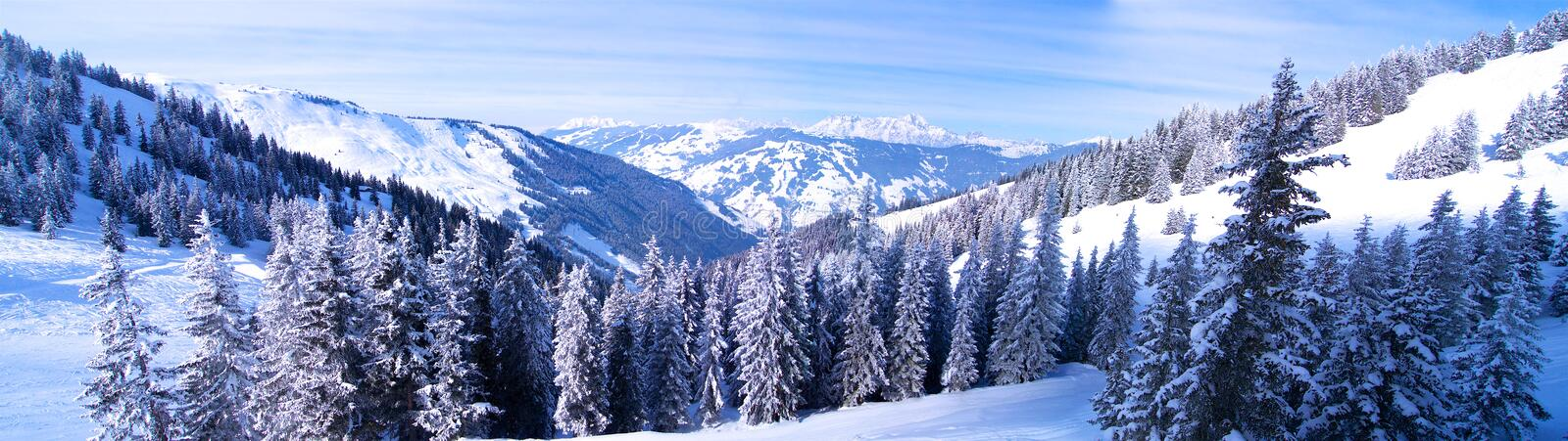 Panorama of forest in winter in the mountains stock photography