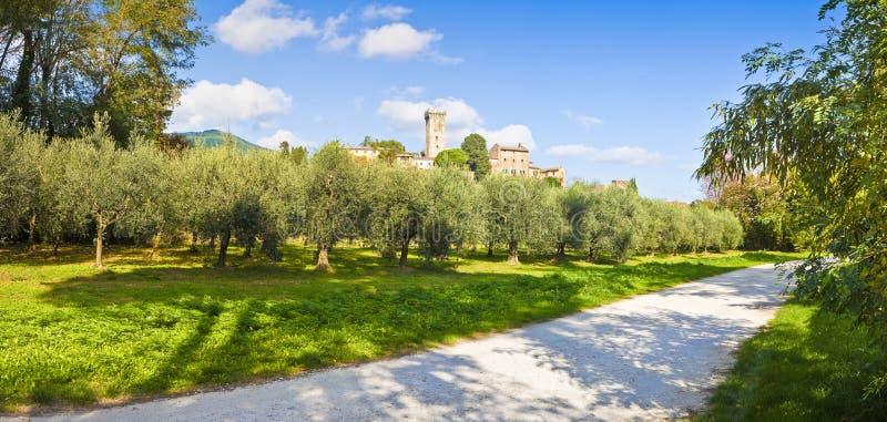 Panorama- foto av den berömda medeltida citadellen av Vicopisano Italien - Tuscany - Pisa arkivfoto
