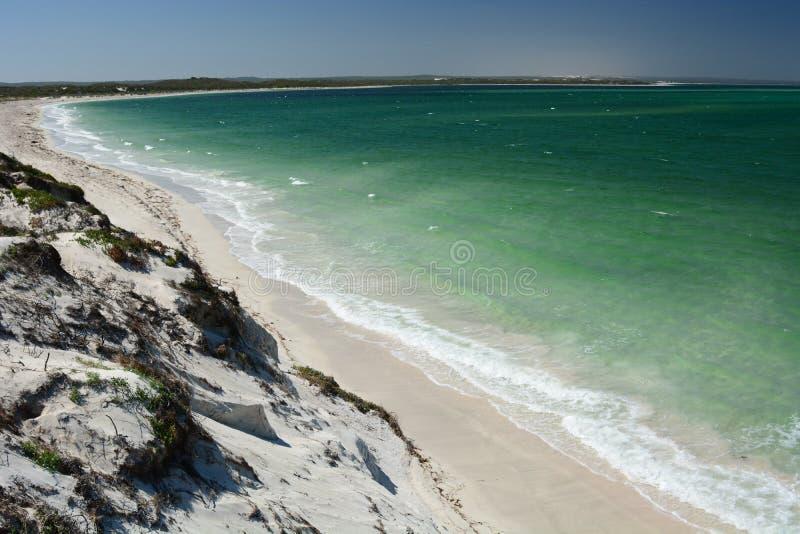 Panorama från törstig punktutkik cervantes Grevskap av Dandaragan Västra Australien australasian royaltyfri fotografi