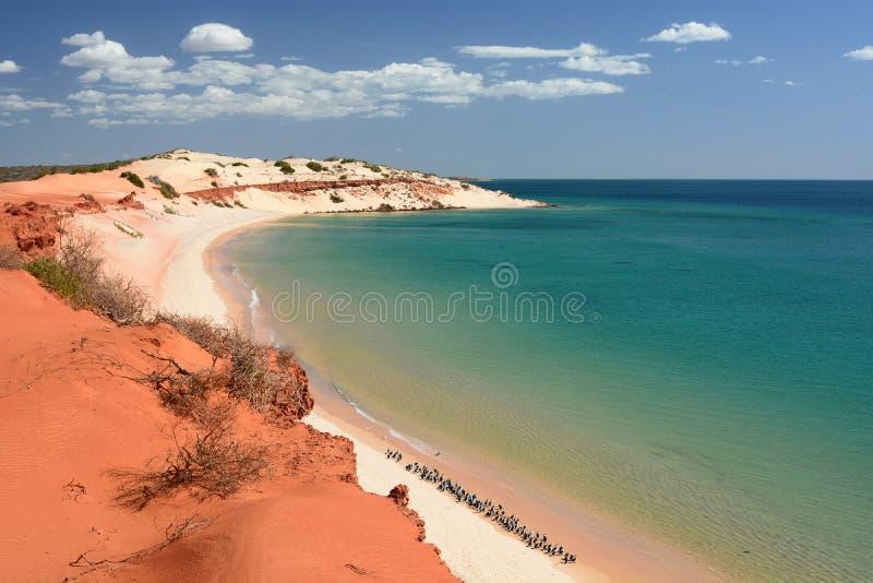 Panorama från udde Peron François Peron nationalpark Hajfjärd Västra Australien arkivfoton