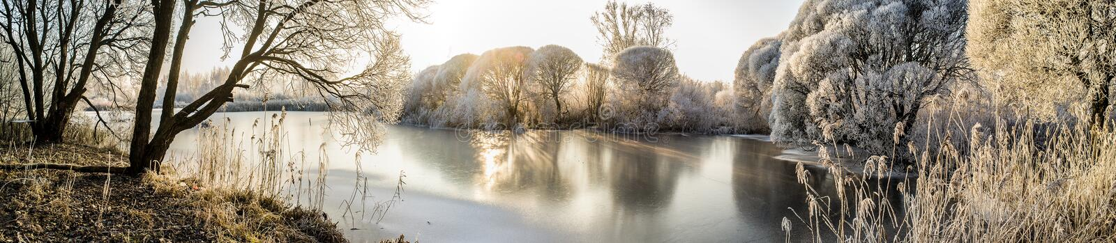 Panorama of the frozen lake and snow-covered trees through which sun rays make their way royalty free stock photo