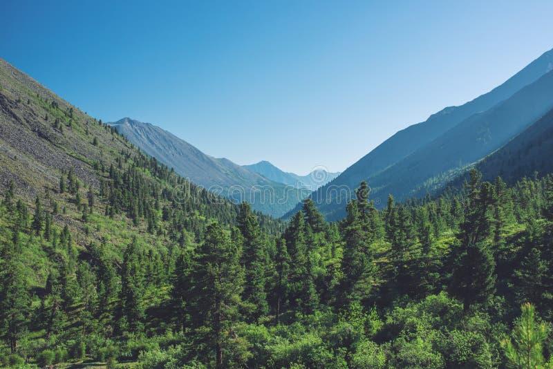 Panorama góry zakrywać z zielenią i niebieskim niebem z chmurami Widok dolina zdjęcia stock