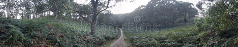 panorama gentil photos stock