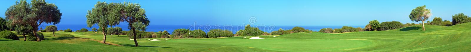 Panorama of Golf field, sea and olives royalty free stock images