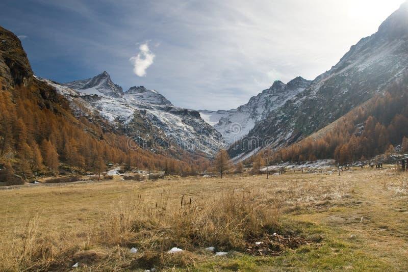Panorama of Gran Paradiso. (Italian Alps royalty free stock images