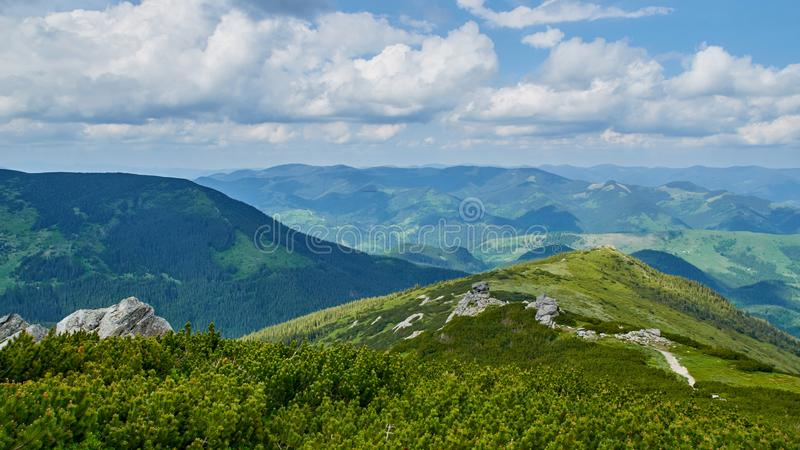 Panorama of green hills and roads in Carpathian mountains in the summer. Mountains landscape background stock photography