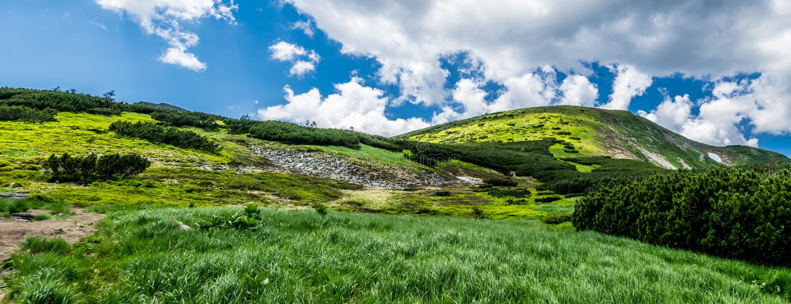 Panorama of green hillside royalty free stock photo