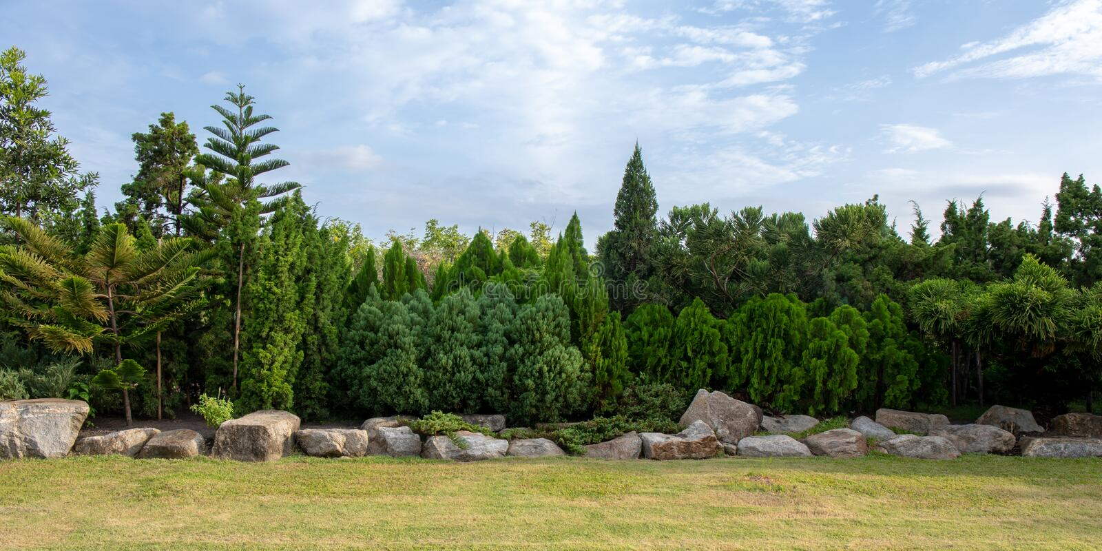 Panorama of green tree and bush with rock decoration in public park garden and blue sky. Public park at Bangkok royalty free stock image