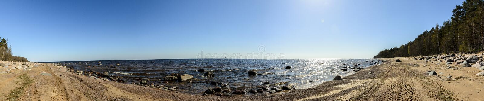 Panorama of the Gulf of Finland, sandy beach with stones and pine trees. Blue sky and water stock photo