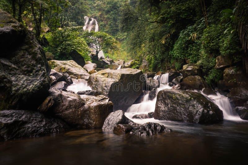 Panorama- härliga tropiska Rainforestvattenfall i indones royaltyfria bilder