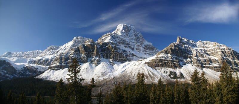 Panorama, Hahnenfuß Glacie lizenzfreies stockfoto