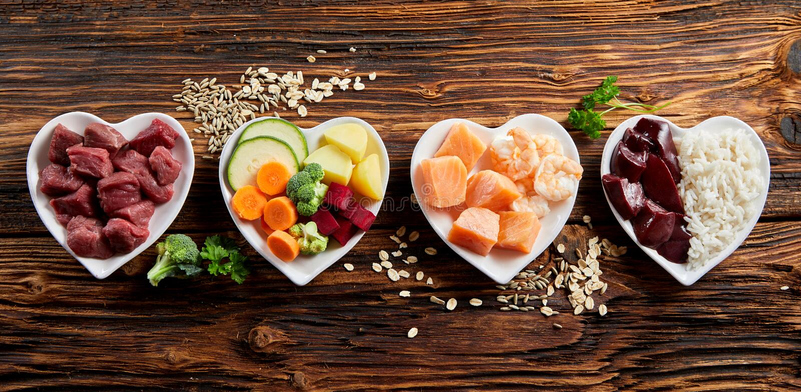 Panorama of healthy fresh ingredients for pet food stock image