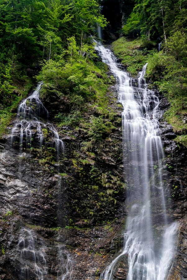 Panorama of high picturesque waterfall in lush green forest landscape royalty free stock photos