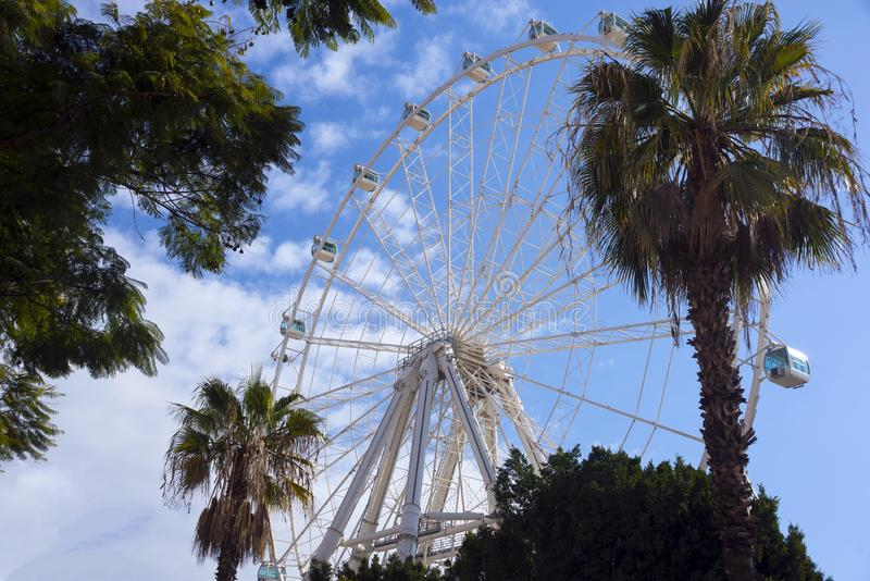 Panorama- hjul, kabiner och palmträd mot den blåa himlen med moln arkivfoto
