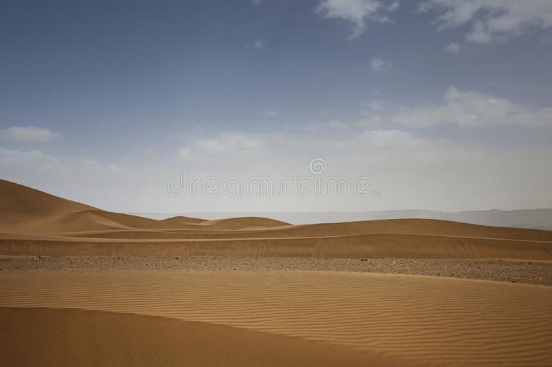Huge dunes of the desert. Growth of deserts on Earth. Panorama of Huge dunes of the desert. Growth of deserts on Earth royalty free stock image
