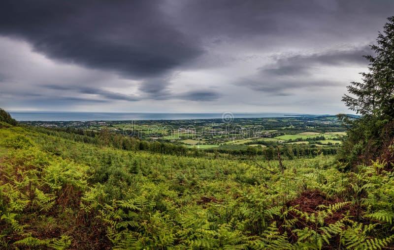 Panorama i Wicklow, Irland royaltyfri foto