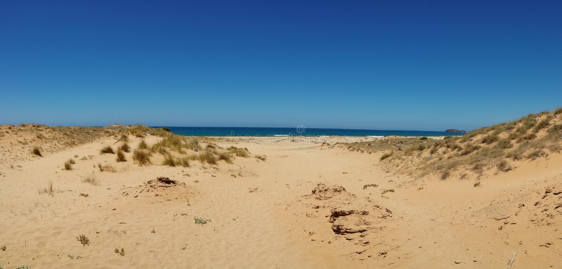 Panorama image of sand dunes and sea on the island of sardinia italy stock photo