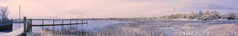 Panorama falso do infravermelho da cor fotos de stock royalty free