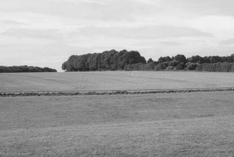 Panorama inglés del país en Salisbury en blanco y negro foto de archivo libre de regalías