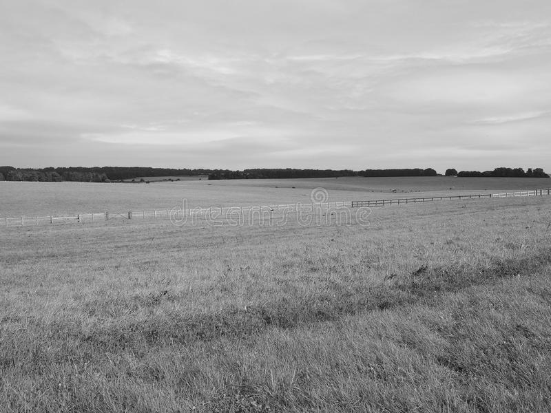 Panorama inglés del país en Salisbury en blanco y negro imagen de archivo libre de regalías