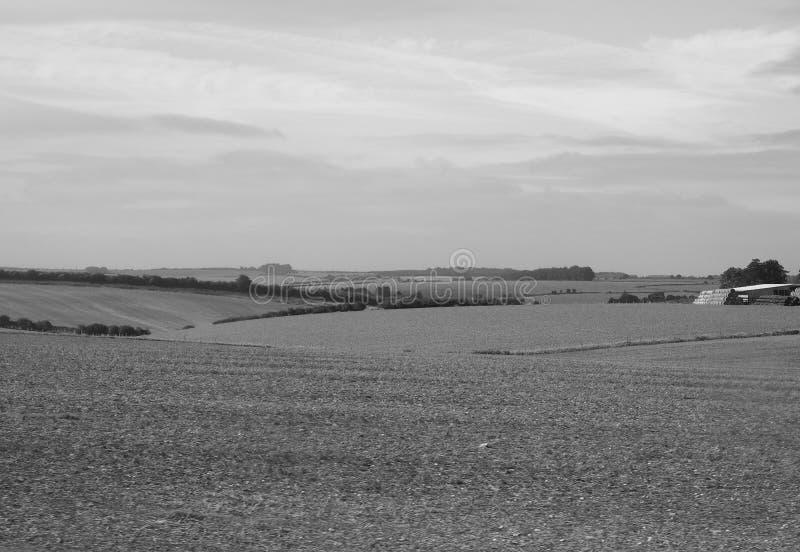 Panorama inglés del país en Salisbury en blanco y negro fotos de archivo libres de regalías