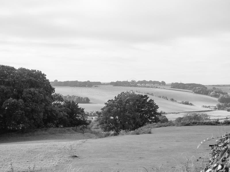 Panorama inglês do país em Salisbúria em preto e branco fotografia de stock